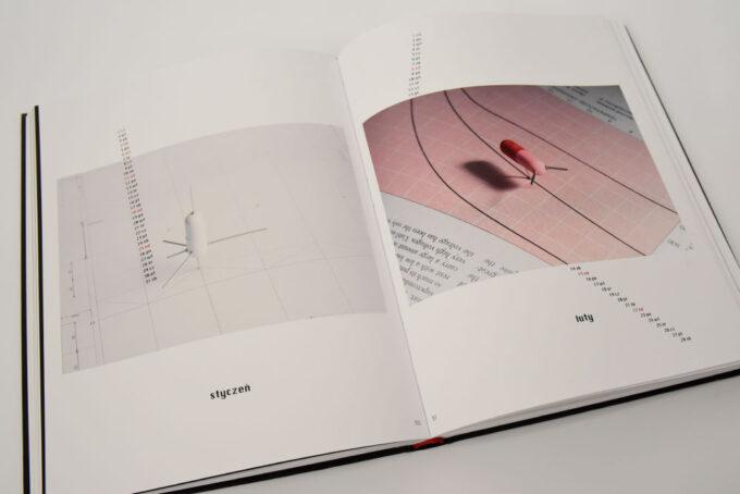 na zdjęciach lądownik wykonany z kapsułek probiotyku i modelarskich szpilek