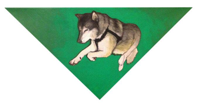 """Pies na zielonym trójkącie """"Zawrat"""""""